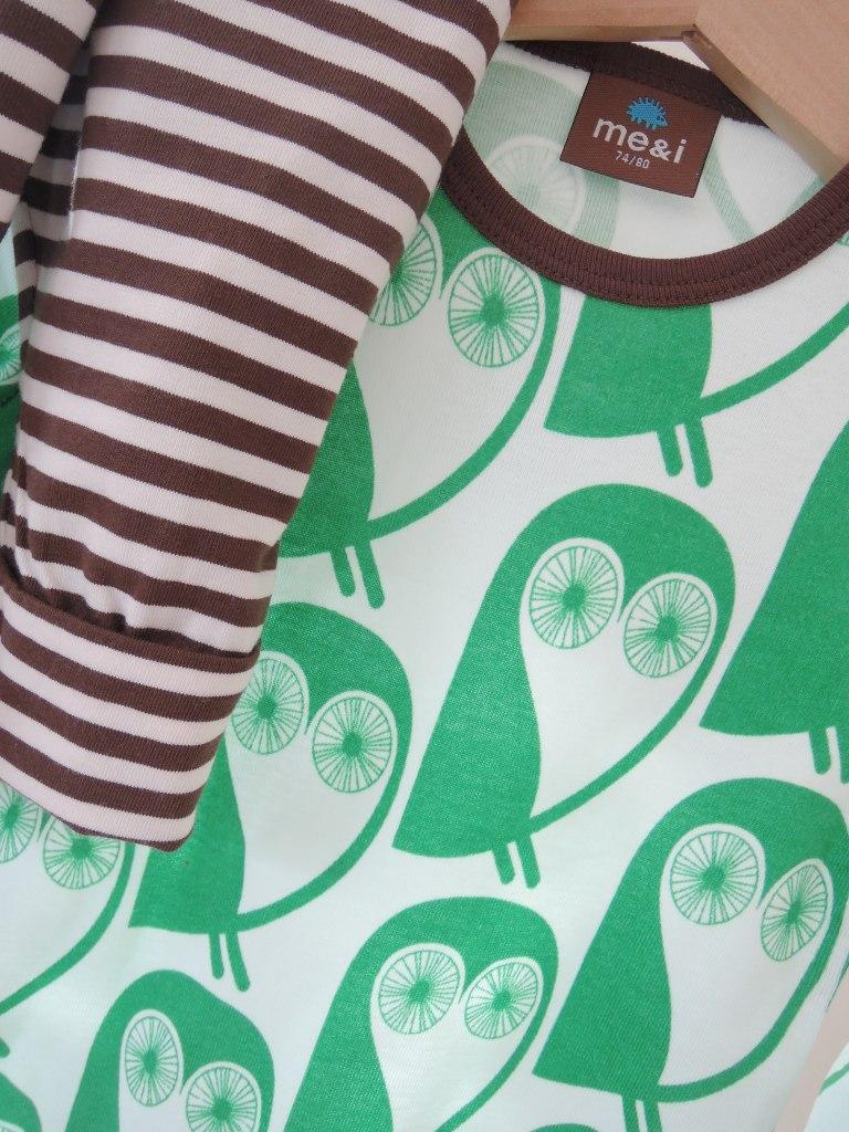 owls body